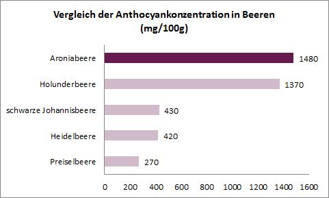 anthocyane-vergleich